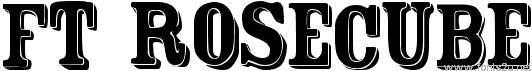 FT Rosecube