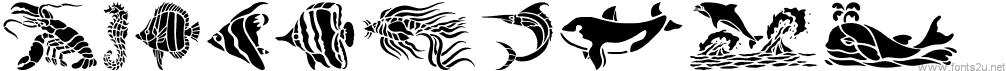 HFF Aqua Stencil